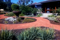 Riverside lawn to native garden makeover