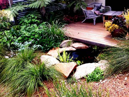 Sustainable productive WILD ABOUT GARDENS Garden Design