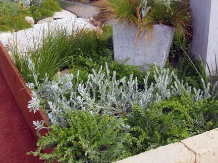 Waterwise plant schemes WILD ABOUT GARDENS Garden Design Perth WA