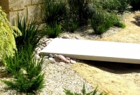 Low native planting in gravel garden