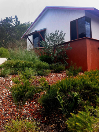 Native garden beside driveway