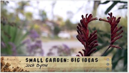 ABC Gardening Australia Josh Byrne