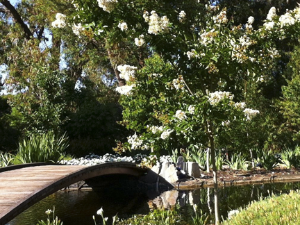 Bridge across country garden pond