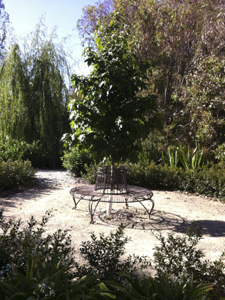 Circular resting area in country garden