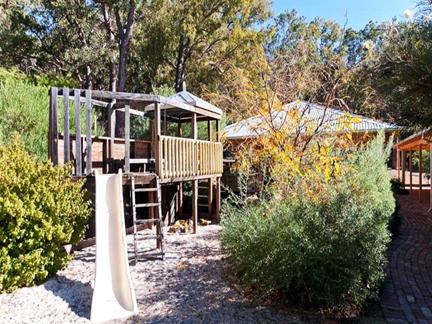 Australian native garden | WILD ABOUT GARDENS || Garden ...