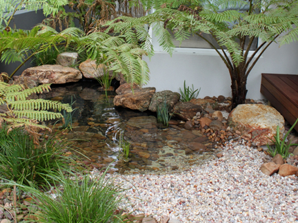 Garden Design Perth coastal garden | wild about gardens || garden design perth wa