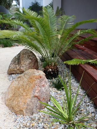 Coastal Garden Design contrast of textures colours coastal garden low maintenance plants by fiona brockhoff Riverstones