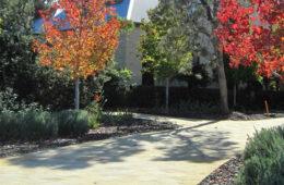 European style garden