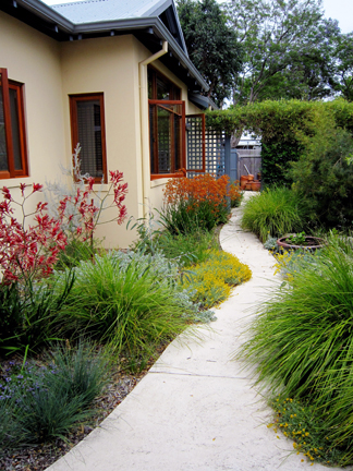 Attractive easy care wild about gardens garden for Garden landscaping perth