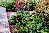 Formal planting in large hills garden
